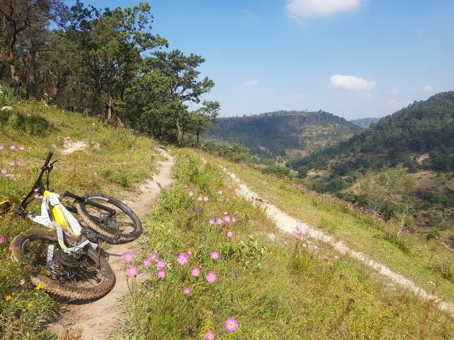 Bici Electrica de montaña Carbon premium Austria Croacia GREYP G 6 3 45 kmh Morelia Michoacan (1)