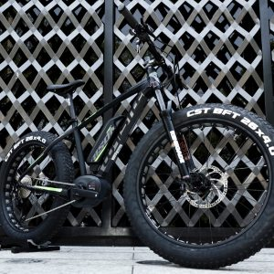 Whistle Bison electric FAT BIKE motor Bosch Mexico POLANCO 1